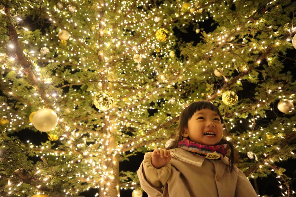キラキラのクリスマスツリーと